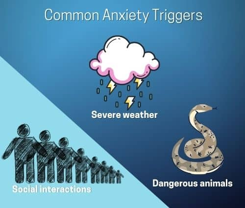 Common Anxiety Triggers
